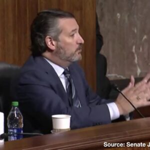 Ted Cruz Blasts Jack Dorsey for Suppressing Discussion of Voter Fraud