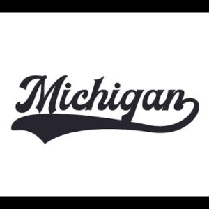 Michigan House Committee Puts Dominion In Its Place, Demands Appearance Before Obtaining Subpeona