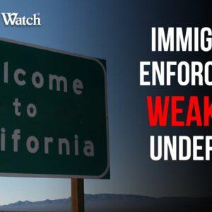 CRISIS: Immigration Enforcement WEAKENED Under Biden
