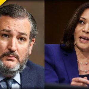 Ted Cruz goes SCORCHED EARTH on Kamala Harris and Her Border Mess