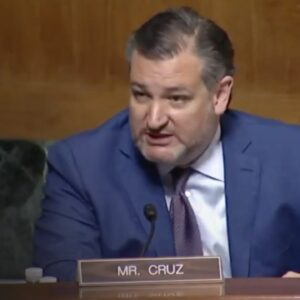 Ted Cruz Just Made the Best Case for the Second Amendment You'll Ever Hear