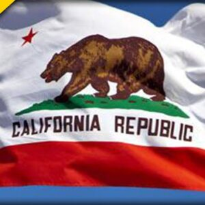 GOP Celebrity Announces Run for California Governor - What are your Thoughts?
