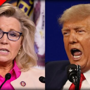 Rep. Liz Cheney (R-INO) asked about 2024, Her Response is Frightening