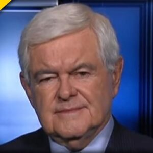 Gingrich Turns to the Camera UNLOADS on Biden, Harris during SCORCHING Interview