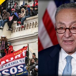 IT BEGINS: Schumer Sets up Vote in the Senate for Most Pathetic Bill of Our Time