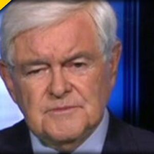 Newt Gingrich UNLEASHES during Interview about Pipeline Attack - This is a MUST SEE!
