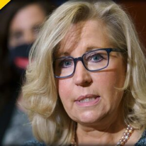 Wyoming Voters Make it CRYSTAL CLEAR what they Want to Happen to Liz Cheney