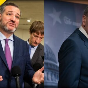 Ted Cruz REVEALS Chuck Schumer's Secret and Why He's SILENT about Israel, Hamas