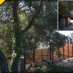 BLM Co-Founder CAUGHT Building HUGE Wall Around one of her Mansions