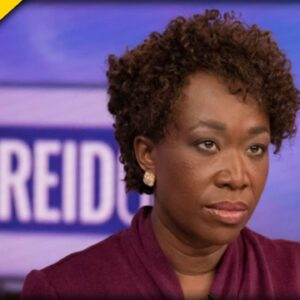 This is MSNBC: Joy Reid Pretends the Border Crisis is Nonexistent