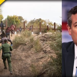 Ted Cruz Ruins Democrat Immigration Plans With A Single Statement