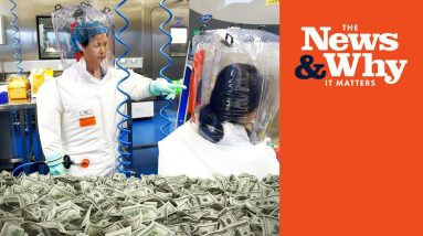 Gain-of-Function Funding CONFIRMED?: BIG Admission From NIH   The News & Why It Matters   Ep 888